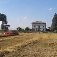 Birrificio contadino Cascina Motta cerca distributori e agenti vendita BIRRA ARTIGIANALE BIOLOGICA