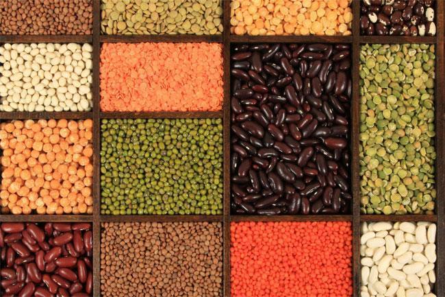 Birre ai legumi: ricette per homebrewers!