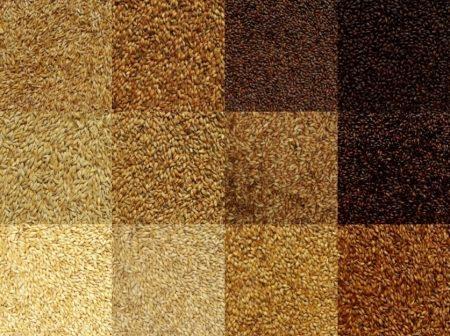 Maillard Reaction: colori, profumi e sapori di birra!