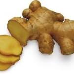 Ginger beer: consigli  per gli homebrewers!
