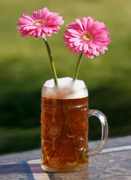 Birra, alleata delle piante!