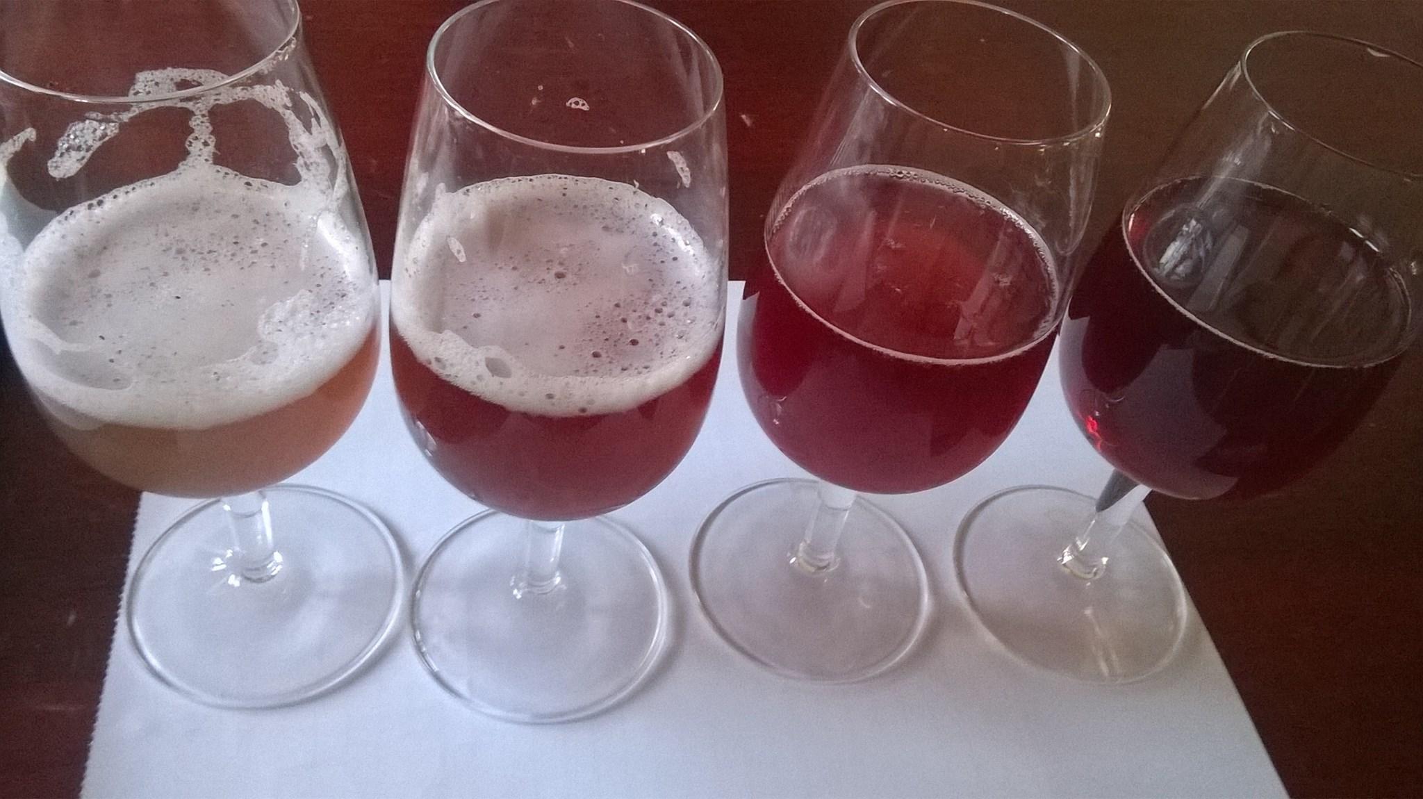 Birre territoriali: l'avanzamento della ricerca del progetto di Accademia italiana della Birra