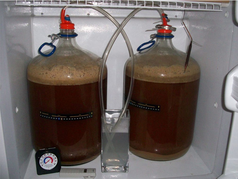"Homebrewing: come destreggiarsi in maniera ""intelligente"" tra i lieviti?"