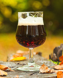 glass_of_bock_in_fall