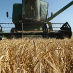 Birra agricola & birrifici agricoli: definizione legale, Cobi e nuove prospettive