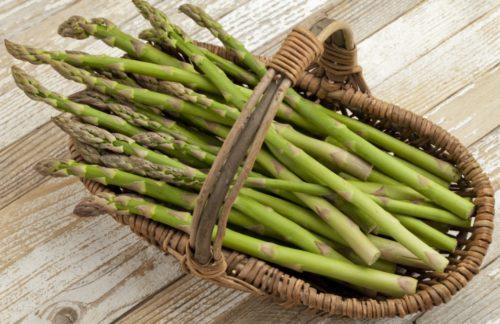 asparagi1