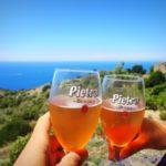 Dalla Corsica… Birra Pietra e nuove prospettive brassicole!