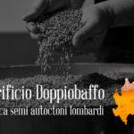 Al via una campagna di crouwdfunding per la Birra Autoctona Lombarda