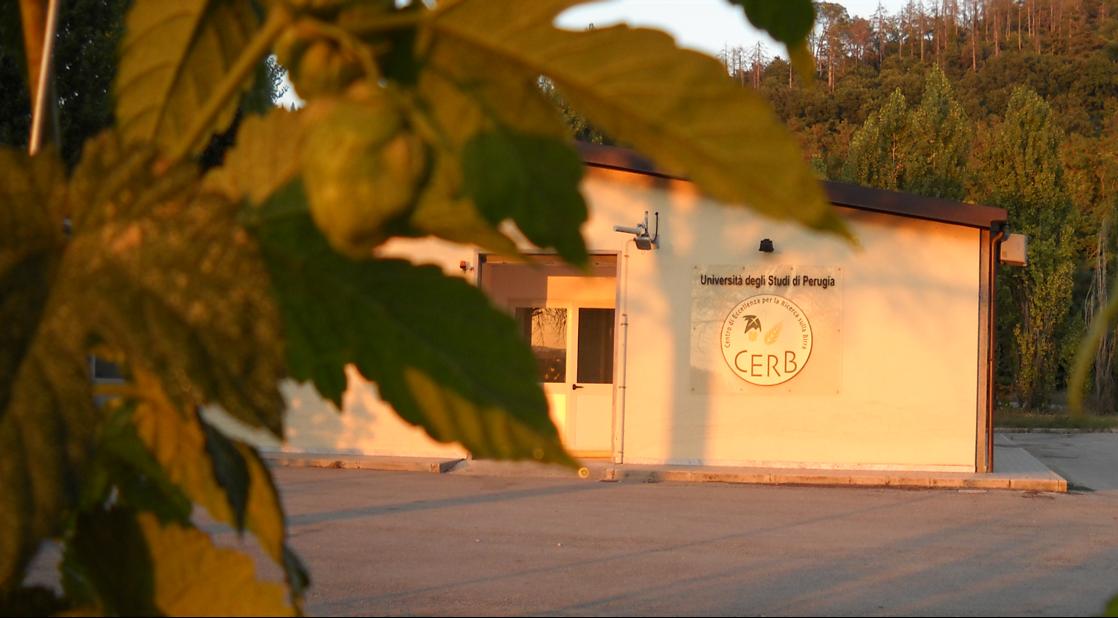 Corso di degustazione tecnica della birra al CERB