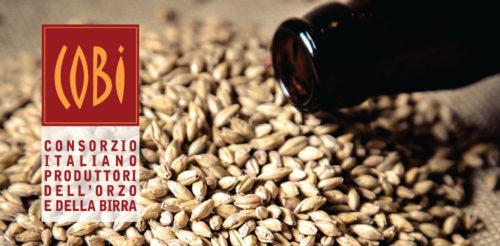 cobi-birra-agricola-1