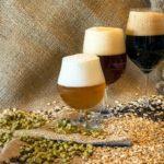 A lezione con l'Onab: gli aspetti nutrizionali della birra – Parte 2
