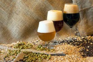 La Regione Marche prepara piano di promozione birra locale