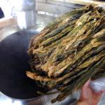 Le alghe e la birra: un connubio strano ma che fa bene alla salute