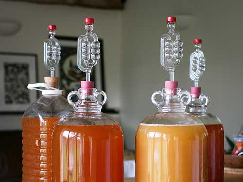 Basse fermentazioni per gli homebrewers: alcuni consigli!