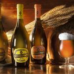 Italian Wine Brands entra nel mondo della birra artigianale!