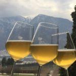 Dal 4 marzo, anche in Trentino si celebra la Settimana della Birra Artigianale!