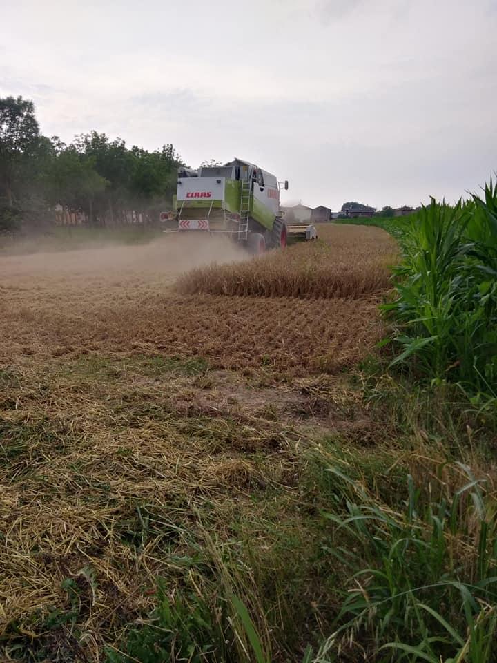 Alle porte di Mantova:l'Agribirrificio La Contea ed il sogno di essere autoctoni!