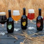 Dal Birrificio Foràn la prima birra biologica e senza glutine in Friuli