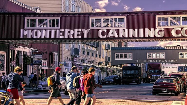 John Steinbeck, Vicolo Cannery e la birra californiana