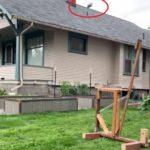 Geni del Covid: vicini inventano catapulta lancia birra da un cortile all'altro