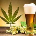 La startup JustMary lancia una birra artigianale alla cannabis CBD!