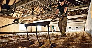 Warminster: il fascino della maltazione tradizionale, a pavimento!