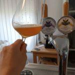 Casamatta: una bella storia birraria dalle Valle del Carnia!