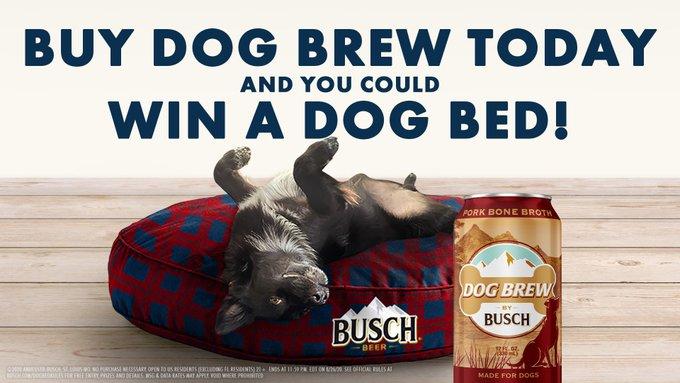 Busch Dog Brew lancia birra per cani sostenibile!