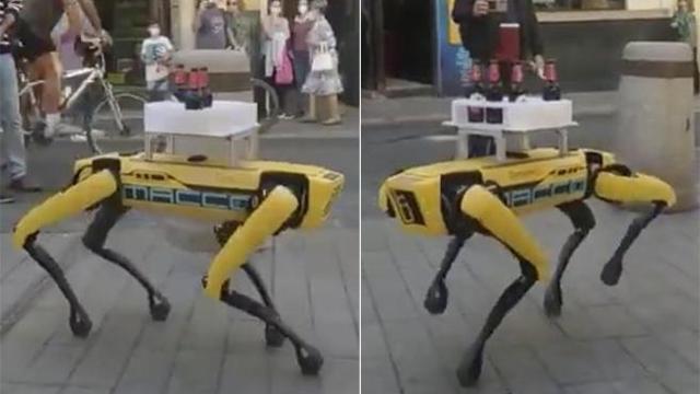 Spot: Arriva il cane-robot che serve le birre ai clienti!